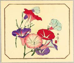 Kawabata Gyokusho   Title:Morning Glories