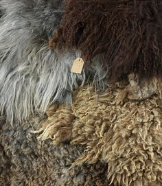 Wonderful fibers and textures- just the wool..no skin  By Zachtaardig