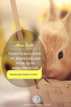 Alexa Skills:Easter Shopping-   www.theteelieblog.com Easter is next week—let Alexa help you stock up on some essentials. #amazonecho