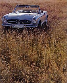 1966 #Mercedes Benz 250 #SL
