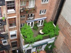 Just because gardeners in New York City live stacked on top of each other in a…