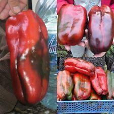 Seeds Sweet Pepper Krasnyy Velikan - Red Giant Organic Russian Heirloom Seed