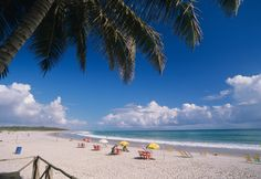 ah, que praia bonita!   Praia do Francês, Maceió, Alagoas