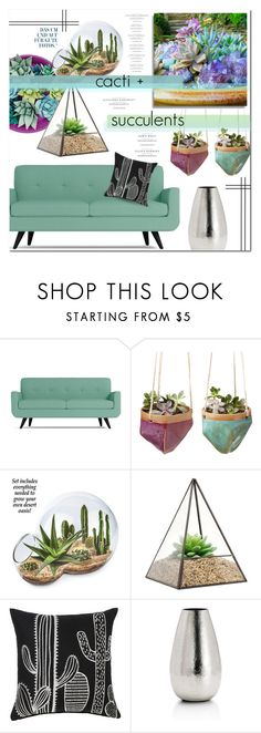 """""""cacti + succulents"""" by lavida ❤ liked on Polyvore featuring interior, interiors, interior design, home, home decor, interior decorating, CO, Dot & Bo, succulents and cacti"""
