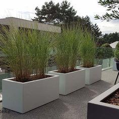 Outdoor Planters, Outdoor Landscaping, Front Yard Landscaping, Garden Planters, Outdoor Gardens, Backyard Garden Design, Backyard Pergola, Lawn And Garden, Garden Design London