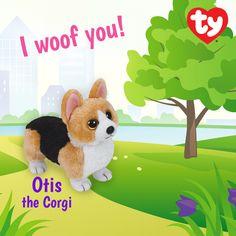 Otis the Corgi 2015 Beanie Baby!