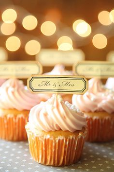 Mr. and Mrs. Cupcake Toppers, Wedding Cupcake toppers, Vintage theme, Shabby Chic