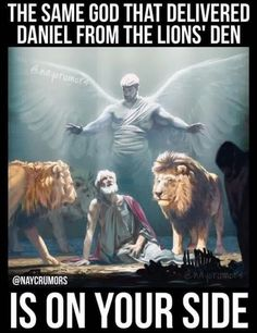 That is so true and so amazing. read the story of Daniel in the bible Christian Faith, Christian Quotes, Christian Warrior, Rasengan Vs Chidori, Lion Of Judah, Prayer Warrior, Jesus Is Lord, Faith In God, Jesus Faith