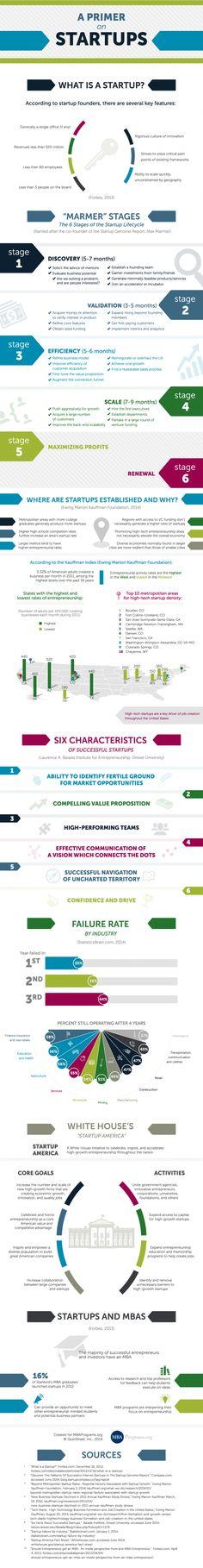 """START-UPS - """"A primer on start-ups [infographic]""""."""