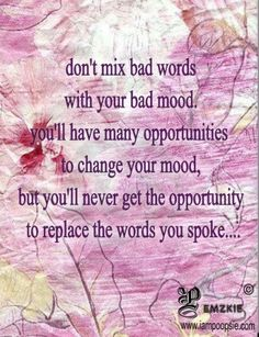 Don't mix bad words with your bad mood ... you will have opportunity to change your mood but not to replace the words you spoke.
