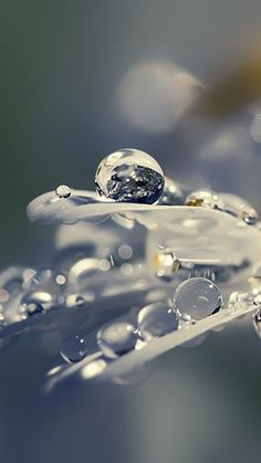 Ideas For Photography Nature Water Morning Dew Dew Drops, Rain Drops, Water Photography, Amazing Photography, Photography Flowers, Levitation Photography, Abstract Photography, Exposure Photography, Urban Photography