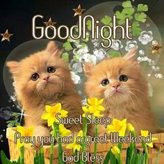 525 Best ✞❀Good Night, God Bless❀✞ images in 2019 | Good