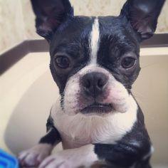 Bath baby!