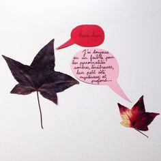 24 - personnalité sombre. #flowleaf2015 #leaf #leaves #autumn #fall #fallleaves