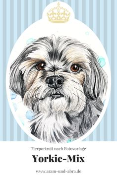 Zeichnung Hund - Yorkshire / Mischling - Aquarell - Aram und Abra