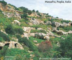 Massafra, Puglia, Italia  www.dispensadeitipici.it not only wine & food  #dtt #murgia #massafra #puglia #italia #nature #natura