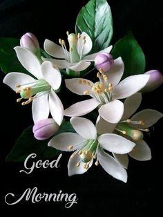 Exotic Flowers, Amazing Flowers, White Flowers, Beautiful Flowers, Fondant Flowers, Sugar Flowers, Fondant Bow, Fondant Tutorial, Fondant Cakes