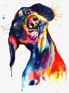 Colorful Dachshund/Wienerdog Watercolor Print - Art Print of my Original Painting Watercolor Animals, Watercolor Print, Watercolor Paintings, Original Paintings, Ink Painting, Arte Dachshund, Golden Retriever Art, Retriever Dog, Illustration