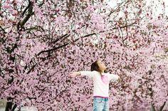Que la primavera inunde de flores nuestras vidas!!! Preciosa #conmiradademadre de @lacamaradelacardelina destacada por @hadasycuscus