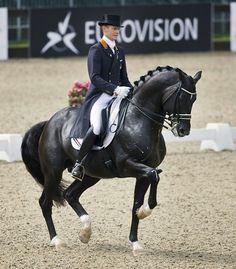Dressur ist sichtbar gemachte Liebe zum Pferd.  Totilas ❤