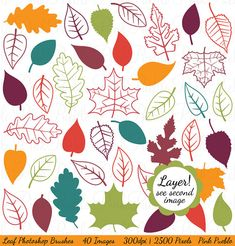 Leaves Photoshop Brushes Fall Leaves Autumn Leaves by PinkPueblo