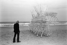 Photograph of Theo Jansen with one of his kinetic Strandbeest sculptures, by Lena Herzog. An exhibition of Jansen's sculptures and Herzog's photography is currently on view at the Peabody Essex Museum, in Salem, Massachusetts. Herzog's Strandbeest: the Dream Machines of Theo Jansen (available in print and ebook editions) was published by Taschen last year.