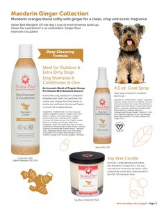Improve Circulation, Dog Shampoo, Therapeutic Grade Essential Oils, Pet Grooming, Conditioner, Fragrance, Pure Products