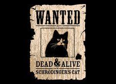 physics joke... schrodinger's cat