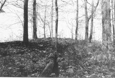 Mound Builders: An Archaeological Survey of Adena Indian Burial Mounds and Earthworks in Wayne County, Indiana