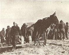 La Batalla por Madrid -Nov.1936 -Jul.1937   Mundo Historia Llegada de un convoy de agua a las líneas defensivas republicanas en la batalla del Jarama, a comienzos de 1936.