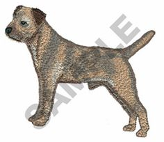 Great Notions Embroidery Design: BORDER TERRIER 3.30 inches H x 4.06 inches W