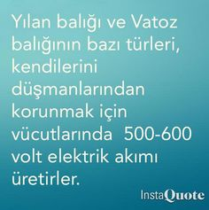 https://twitter.com/harika_bilim