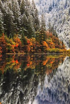 ✯ Mirror Lake - Autumn