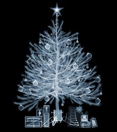 A shot of a real Christmas tree by an X-Ray photographer.
