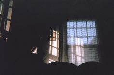 """Good Morning"" from my disposable camera blog about visiting old friends, dogs, and rude awakenings."