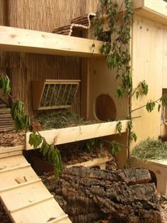 Beautiful outdoor enclosure for rabbits. Huge, great and creatively decorated . # outdoor enclosure # for Beautiful outdoor enclosure for rabbits. Huge, great and creatively furnished . - Practical information Lea C Rabbit Shed, Rabbit Run, Pet Rabbit, Bunny Cages, Rabbit Cages, Rabbit Habitat, Rabbit Enclosure, Lapin Art, Bunny Room