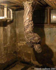 corpse growing out of the basement ceiling