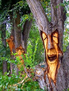 Extreme lawn art.  Lots of interesting ideas~