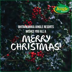 Celebrate your Christmas with Bhitarkanika Jungle Resorts and plan a getaway by giving yourself and your family a surprise with some of these irresistible packages! For more, visit: http://www.bhitarkanikanationalpark.com/packages/  #BhitarkanikaJungleResorts #holidayseason