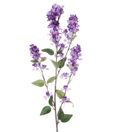 Spring Floral Lilac Tall Branch Dark PurpleSpring Floral Lilac Tall Branch Dark Purple,