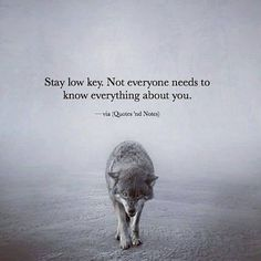 Wolf quotes, 2 am quotes, low key quotes, quotes of wisdom, good things . Wisdom Quotes, True Quotes, Great Quotes, Quotes To Live By, Motivational Quotes, Inspirational Quotes, Qoutes, Spiritual Quotes, Quotes Quotes