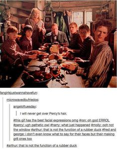 Lol the weasley family. Harry potter funny Source by rachael_rave Look Mundo Harry Potter, Harry Potter Jokes, Harry Potter Fandom, Harry Potter World, George Harry Potter, Harry Potter Wattpad, Drarry, Dramione, Familia Weasley