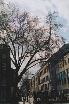 Sunny almost-spring in London