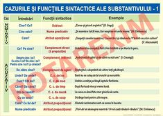 Cazurile si functiile sintactice ale substantivului - ROTAREXIM S. Scotch Whiskey, Irish Whiskey, Romanian Language, Bourbon Drinks, Architecture Quotes, Home Brewing Beer, School Lessons, Travel Design, Craft Beer