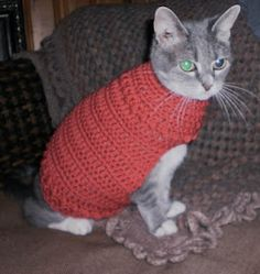 Crow Haven Cottage: See what happens when I get bored! Free Phoebe's Favorite Crocheted Cat (or Dog) Sweater Pattern