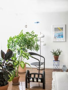 Its unusual shape may have presented more than a few design challenges, but the designer's living room highlights two of the great perks of living in LA: lots of space, and plenty of natural light. Decor, Living Room, Room, Interior, Home, Apartment Plants, Los Angeles Homes, Interior Design, New Room