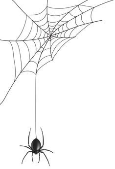 Spider Web Drawing, Spider Web Tattoo, Spider Art, Web Paint, Octopus Drawing, Spooky Tattoos, Silhouette Clip Art, Tattoo Illustration, Flash Art