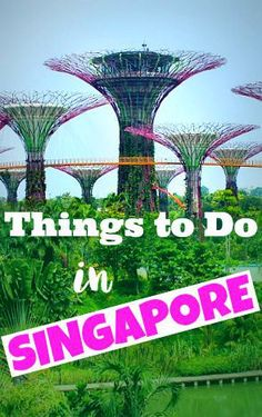 Things to Do in Singapore - a country more exciting than you might think!