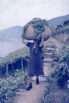 Frühling im Süden – Cinque Terre