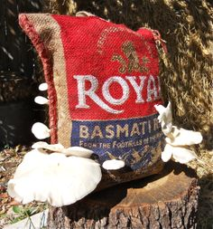 Burlap sack used as a vessel to grow mushrooms from 100th Monkey Mushrooms garden kit